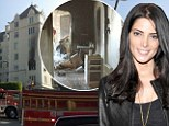 Ashley Greene flees blazing Hollywood apartment: Twilight actress's condo goes up in flames as pet dog perishes in fire