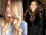 Blonde ambition! Sofia Vergara swaps her brown hair for lighter locks just in time for summer