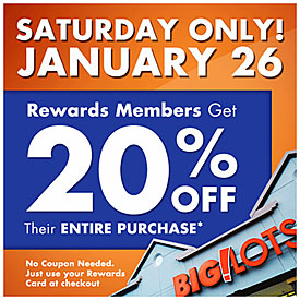 Big Lots 20% off this weekend only