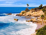 Palm trees sway over the sandy beach at Fishermans Cove in Laguna Beach