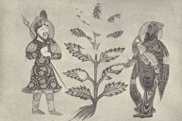Figure 2 - Warrior and Physician Facing a Medicinal Plant