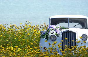 Der passende Autoschmuck macht jedes Hochzeitsauto zum Hingucker. Allerdings muss man ein paar wichtige Dinge beachten. – © schaltwerk - Fotolia.com