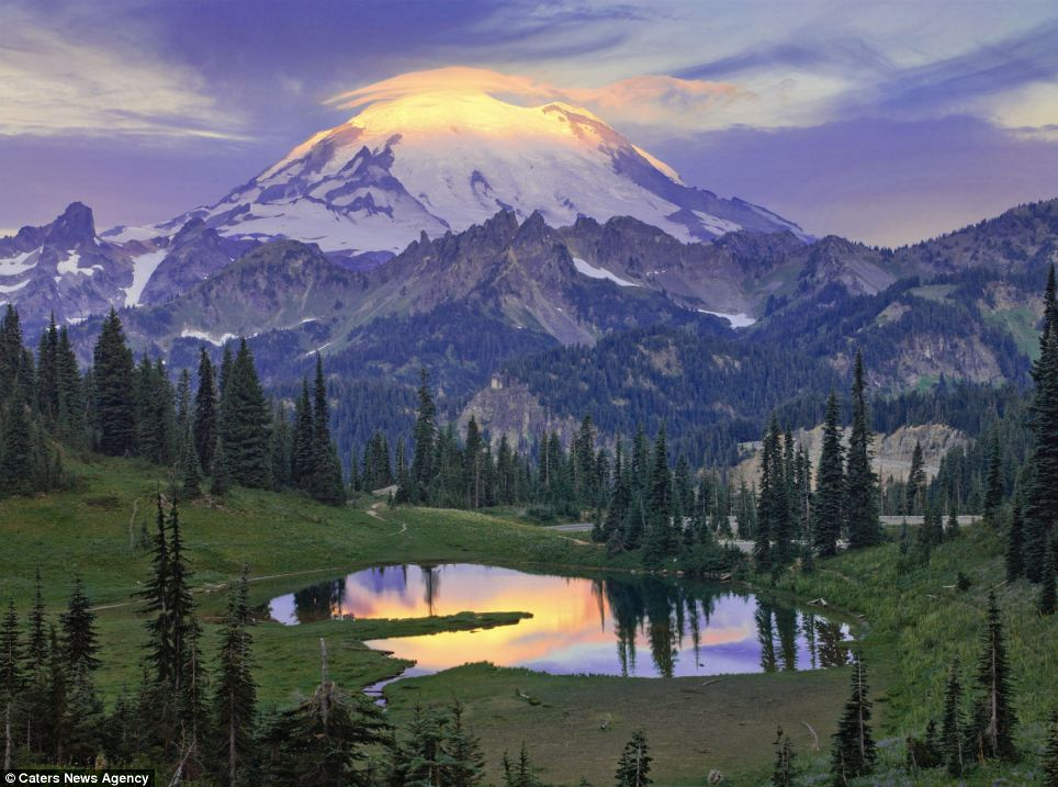 Towering: The sun rises over Tipsoo Pond set in the lush greenery of Mount Rainier National Park in Washington state