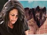 Wolf-mother: Kristin Stewart's mother gets restraining order against neighbor who threatens her wolves