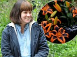 It¿s not exactly a Brit! Lily Cooper looks delighted with namesake flower¿ as she goes make-up free at Chelsea Flower Show