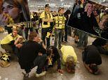 Borussia Dortmund soccer fans