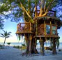 Time is running out for the owners of a large tree house on the west coast of Florida. The owners, Richard Hazen and Lynn Tran, say they built it for personal use in front of the resort they run. Now they're being told it needs to be demolished.