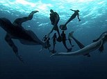 Popular: Animal Planet's 'documentary' about the existence of mermaids drew the network's largest ever audience of 3.6million viewers