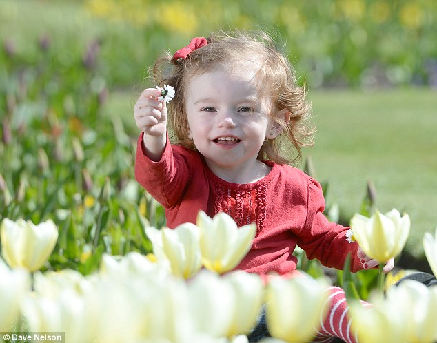 Delight: Miqualer Causon, aged 21 months, enjoys the weather in Stanley Park, Blackpool, today
