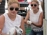 Bunny time: Ariel Winter held onto a rabbit on Sunday while visiting the Farmer's Market in Studio City, California with her family