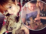 Cub cuddle: Bella Thorne spent some time with a little lion and shared the photos on Sunday via Instagram