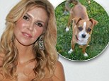 'Please help': Brandi Glanville has posted a reward for her missing dog