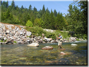 Fishing on the Upper Sacramento River