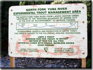 North Fork Yuba River Experimental Trout Management Area