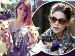 'Today was a great day!' Ashley Greene adopts two rescue puppies three months after her beloved pooch perishes in house fire