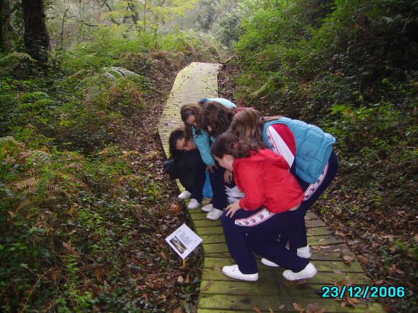 Consultoría ambiental Campañas Municipales de Educación Ambiental - Taller didáctico Aula de la Montaña del Ayuntamiento de Oviedo y la Federación de Montaña