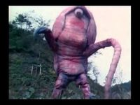 WTF Japanese Movie Pink Armadillo Attack wtf pink armadillo attack