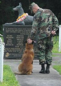 Tribute to Marine War Dogs