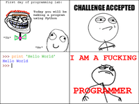 Are you a F*cking Programmer?