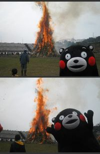 Some bear just want to see the world burn