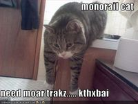 what monorail cat wants