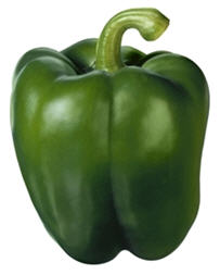 Capsicum Pepper, green