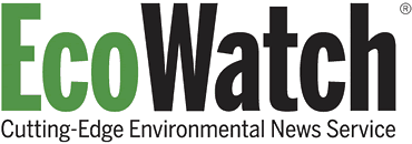 EcoWatch: Uniting the voice of the grassroots environmental movement