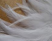 Saddle Feather Color Blast Sampler -- Black & White