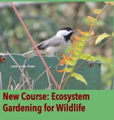 Ecosystem Gardening for Wildlife