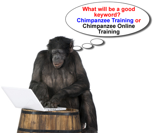 SEO is too easy that even a chimpanzee can do it