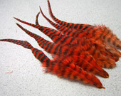 4 Pcs - 7 to 9 Inch, HOT ORANGE Grizzly Rooster Feathers