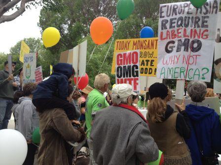GMO Rally 2