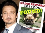 Homeward bound! Jeremy Renner thanks fans as beloved French Bulldog Hemi is found safe and sound - 189 miles away!