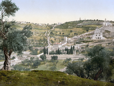 Mount of Olives, Jerusalem.