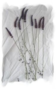 lavender wand step three