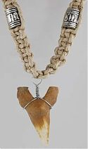 Amulet: Shark's Tooth Hemp Necklace