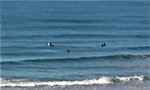 Los Angeles surf for Sunday, we can see the surf and it's not there