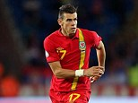 Cameo appearance: Bale came off the bench in Wales' 3-0 loss to Serbia last month