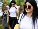 Going out on her own! Kylie Jenner takes a break from her parents' separation drama with a solo fast food run