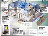 Going green: Only 12 homes have signed up the Government's green deal since its launch
