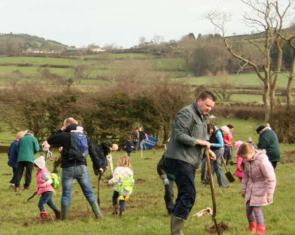 tree planting at diamond jubilee wood in whitehead