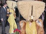 From a galaxy far, far away... Lady Gaga leaves her hotel in a giant, triangular hair-covered mask with a golden beak