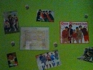 One Direction Kamer Moyra