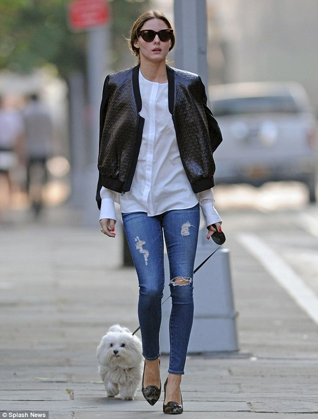 Out for a trot: Olivia was looking breezy and chic in tight ripped jeans as she took her fluffy white dog Mr. Butler out for a walk in New York City on Friday