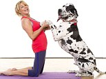 Mutt on a mat: Jilly Johnson tries doga - yoga with dogs - with her one-year-old Great Dane Hugo