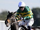 Up and over: Tony McCoy clears the last on his way to winning on Captain Cutter at Kempton