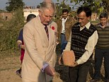 Prince Charles sows some rice seed during a visit to the Navdanya Organic Fam and Education Centre in Dehradun, India today