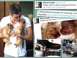 Simon Cowell and his beloved dogs