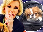 Naughty Joan Rivers! Fashion Police host sneaks her pooch out of airplane crate, urging the internet to 'say nothing'