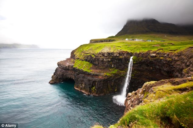 Lying 200 miles north of Scotland, the Faroe Islands have 50,000 inhabitants but 700 miles of coastline and some of the highest sea cliffs in the world. Sperm whales dive deeper than any other great whale and swim far north